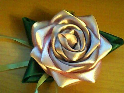 Золотая роза