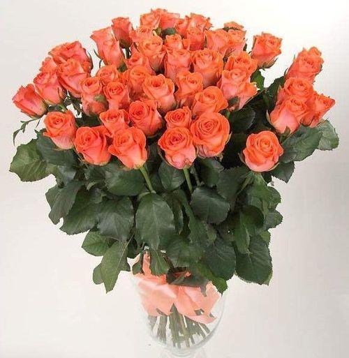 Букет из роз Вау