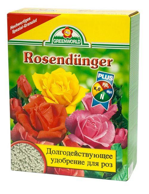 Особенности роз сорта Осирия